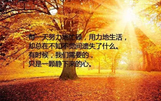 凡事看淡一点,想开一些,一切随缘,随心;无意于得,就无所...