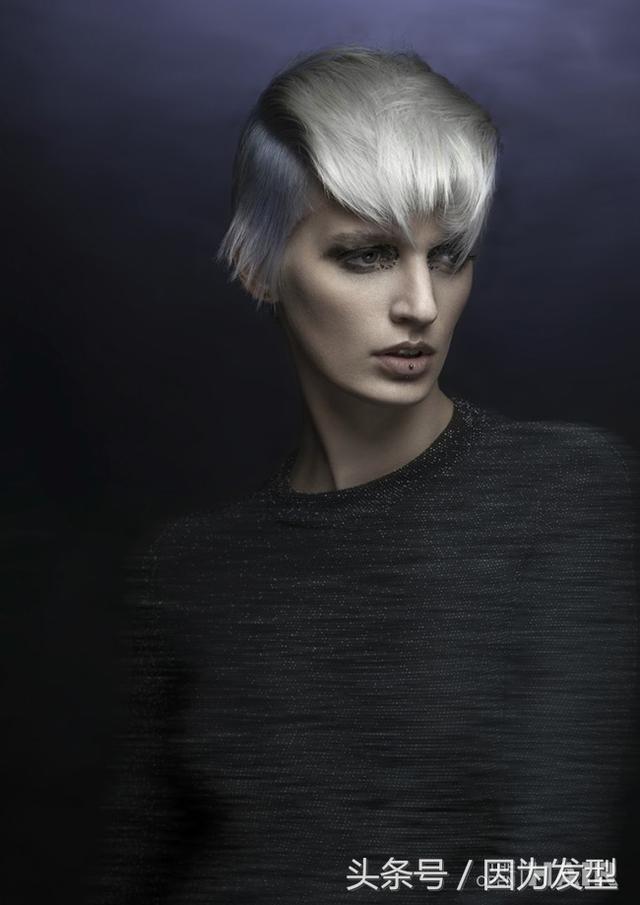 发型趋势 法国发型师造型冠军作品