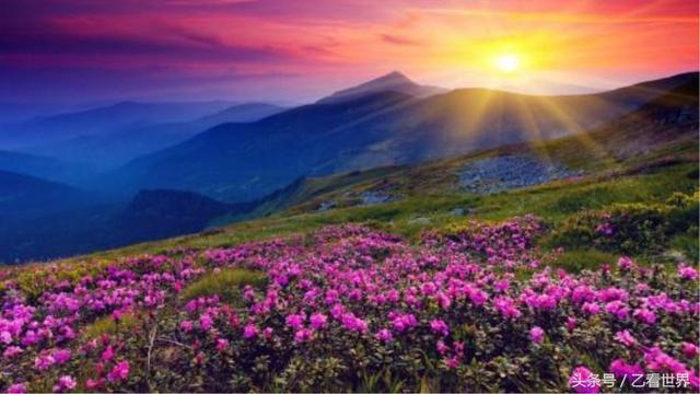 中青看点 旅游频道 > 正文   格萨拉生态旅游区是攀枝花市的重要林区