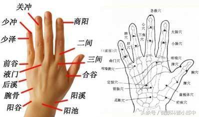 穴_靠无名指一侧的小指指尖有少冲穴,另一侧则有少泽穴.