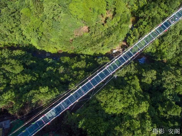 安徽池州醉山野5d玻璃桥昨日对外开放(多图)