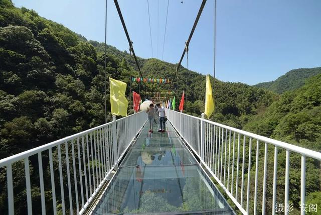 """六月一日,安徽首座5d玻璃桥""""醉仙谷玻璃桥""""在池州市石台县醉山野度假"""