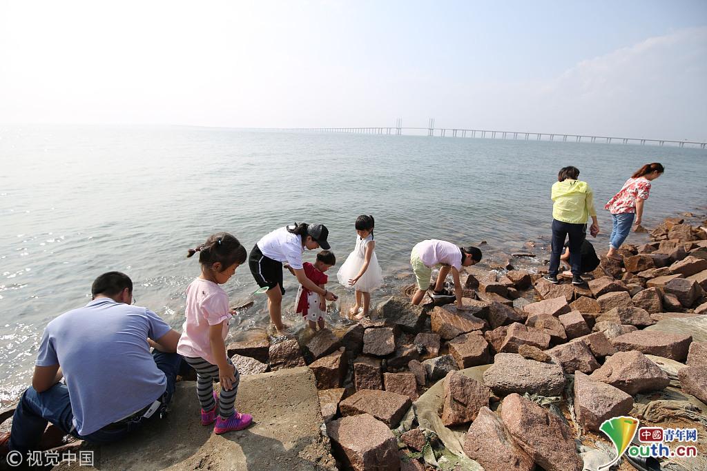 青岛:胶州湾迎来赶海热 市民周末前去拾贝钓螃蟹