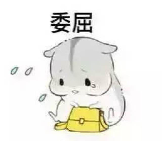 萌萌哒的仓鼠表情包:撩妹斗图必备,喜欢的朋友快来拿呀