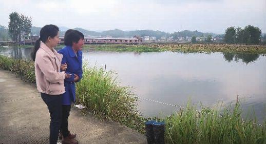 三婶夜吟_10月15日,新化县琅塘镇,戴某花三婶再次来到她溺水的池塘边,情绪几度