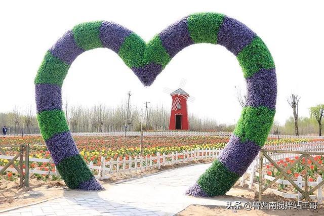 #趣旅游#游黄河森林公园,徜徉林间花海,东明欢迎您!