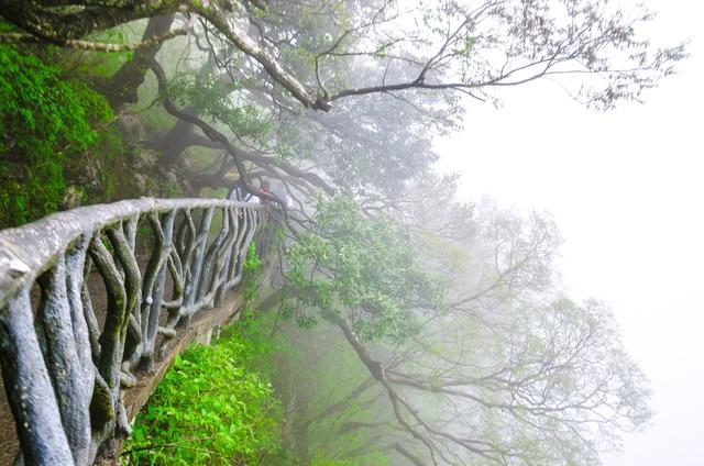 """【旅行柚子君】我国最美的盘山公路,99道弯弯弯紧连,堪称""""天下第一公路奇观"""""""