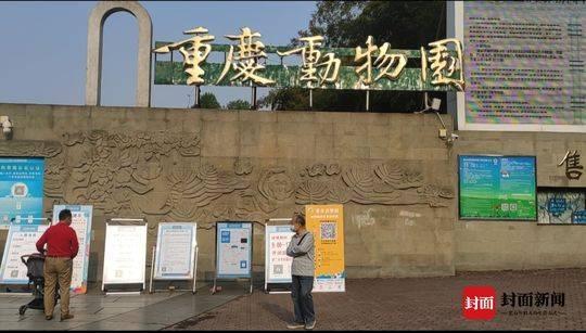 『封面新闻』生活重启 | 重庆动物园重新开园了!全国医护人员今年内免费游园