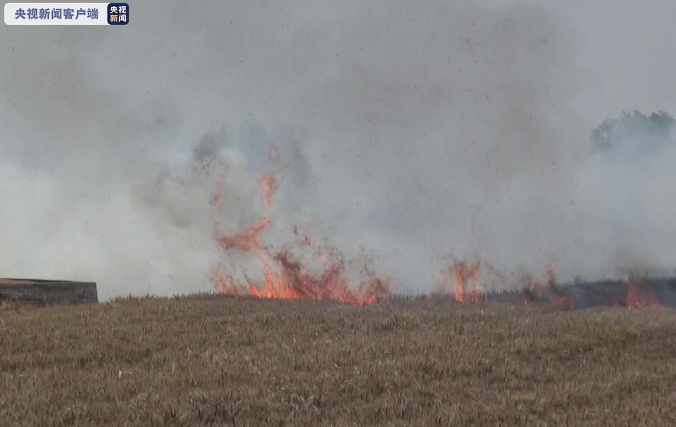 央视新闻客户端高温天气致收割机引燃麦田 江苏警民全力以赴救大火