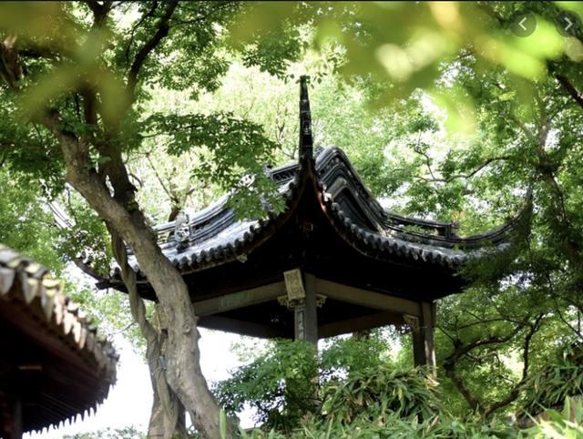 [旅行百事通]再游苏州,方知沧浪亭的远山近水,竟是一朝文人归隐的温柔乡