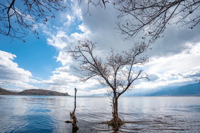 #旅行百事通#还去什么瓦纳卡 水中孤树云南大理也有 美得不可方物
