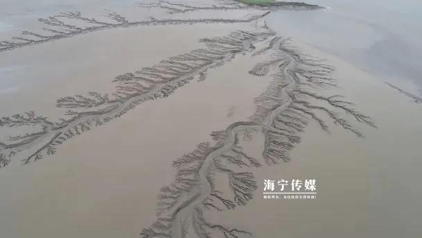 [全国党媒信息公共平台]实拍!海宁有人在钱塘江上发现又一奇观!很少人亲眼见过
