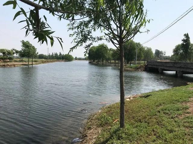 """#玩乐足迹#这个村被称为""""巨鹿小江南"""""""