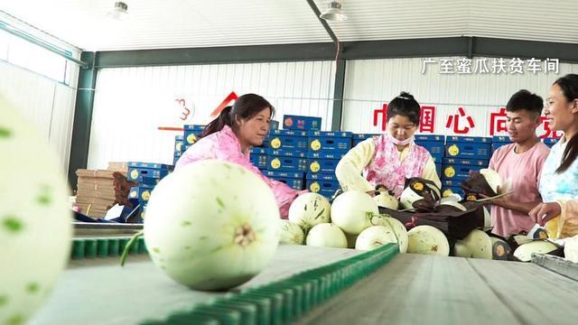 新华网客户端瓜州县:壮大多元富民产业 巩固提升脱贫成果