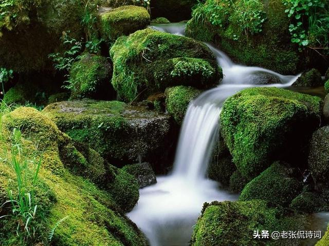 『世界那么大』除了《醉翁亭记》,欧阳修还有一首诗写滁州,一样的精美无比