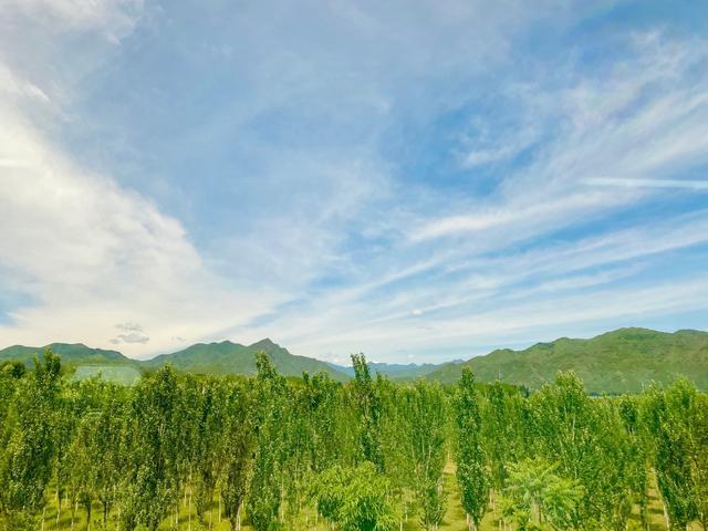 """北京日报客户端继S2线后,S5线又将成为""""开往春天的铁路线"""",明年春出发"""