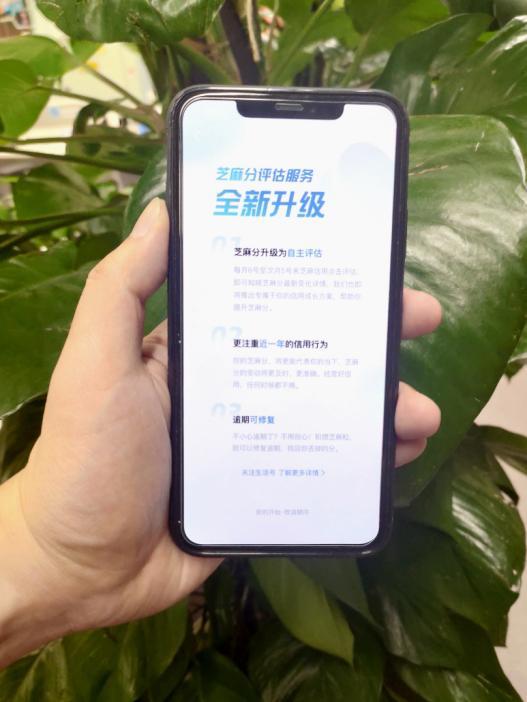 央广网今天芝麻分终于涨了,解锁商业信用价值新姿势