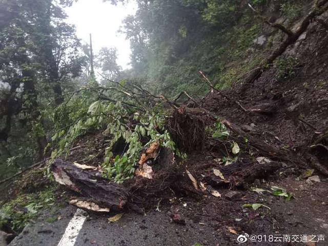 小蜜疯汽车:暴雨来袭!怒江贡山多条道路交通中断,丙中洛暂缓游客进入