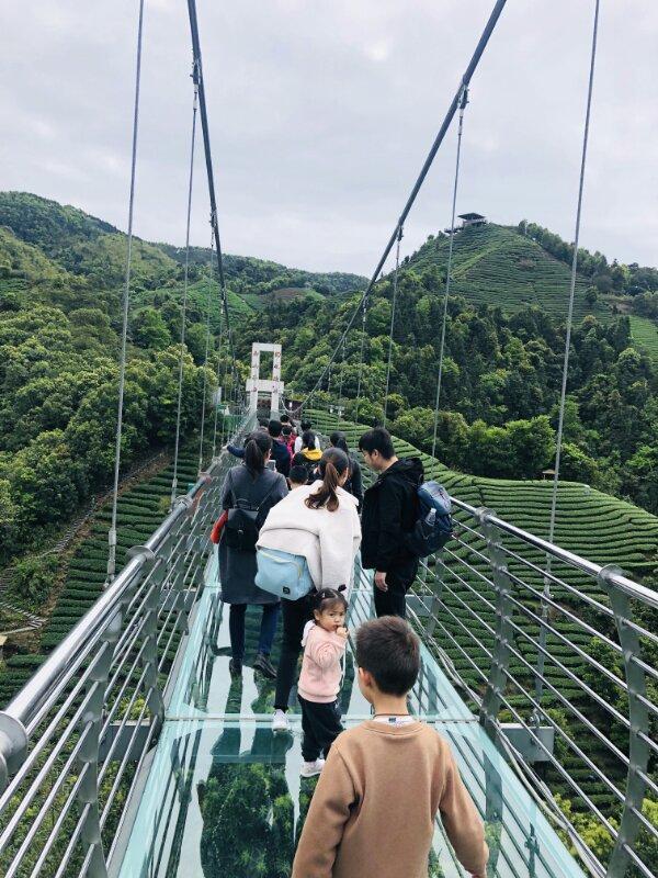 「旅行柚子君」旅游消费助推行业振兴——贺州文旅人自费旅游