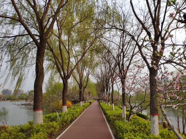 「旅行柚子君」太原将推进汾河健身文化步道建设!今后健身休闲会有更多好去处!