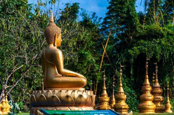 #中国网#夜宿中缅边境的傣家竹楼 醒来发现美丽村寨