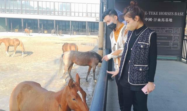 「中國日報網」烏魯木齊市區景點復工 游客奔汗血寶馬而來