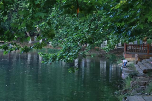『约吗旅行』贵阳:初夏湿地景如画
