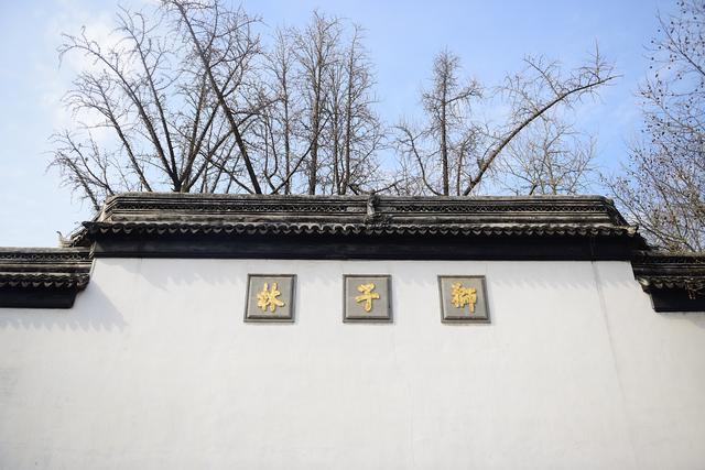 「环球网」苏州:探访狮子林 花红树绿春色美