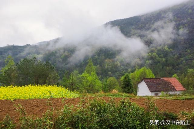#趣旅游#周末山中行,汉中春雨中的风光依旧很美!