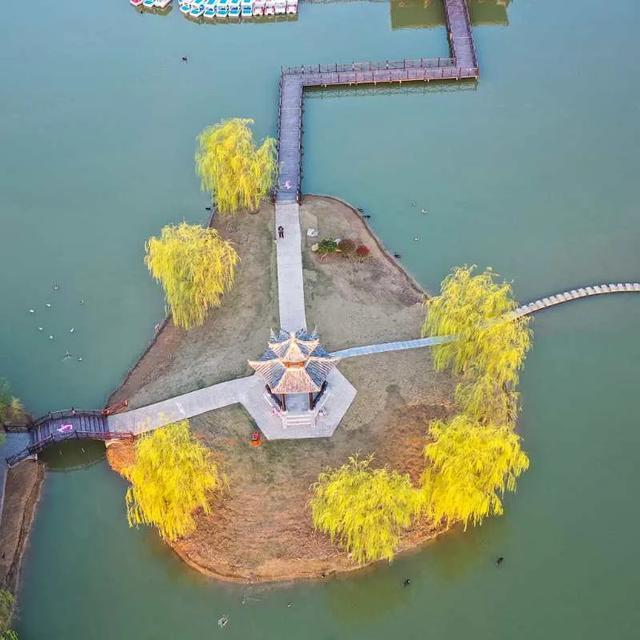 玩乐足迹:踏青枣庄行 | 双龙湖湿地美景随春来