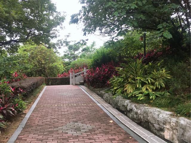 玩乐足迹▲休闲的好去处,广州新塘四望岗公园