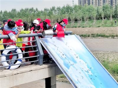 青海新闻网15万尾花斑裸鲤首次放流湟水河