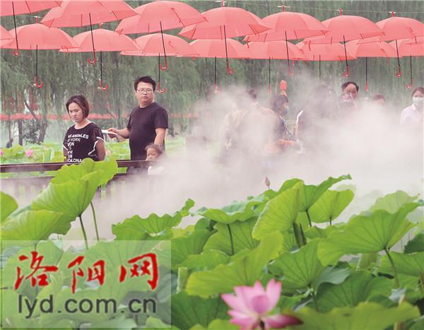 #嗨年#2020中国(孟津)黄河小浪底文化旅游节开幕