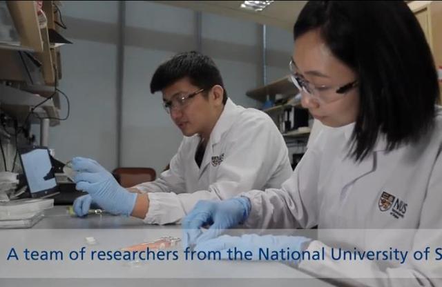 环球网科学家研制出新型可拉伸材料:能发光 可自愈