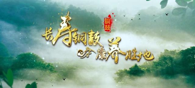 """红网长沙向东一小时 江西铜鼓邀湖南""""老表""""快乐康养游"""