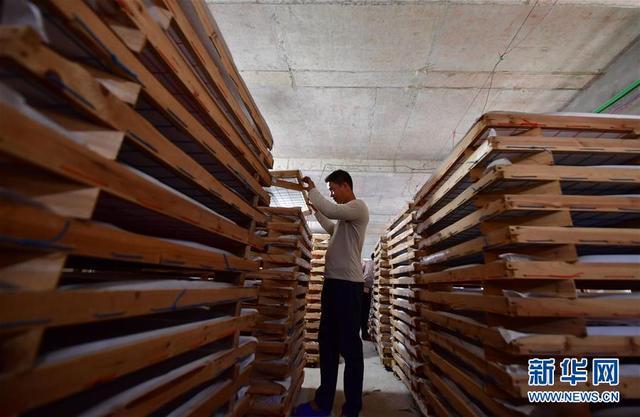 新华网客户端广西鹿寨:桑蚕养殖助脱贫