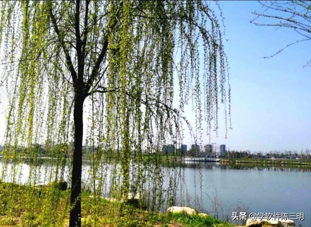 [趣旅游]心旷神怡游月湖