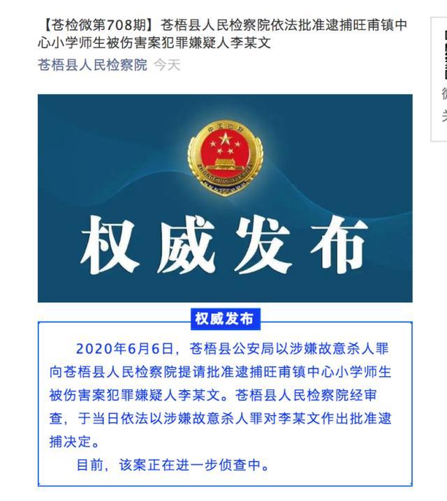 红星新闻涉嫌故意杀人罪 广西砍伤39名师生保安被批捕