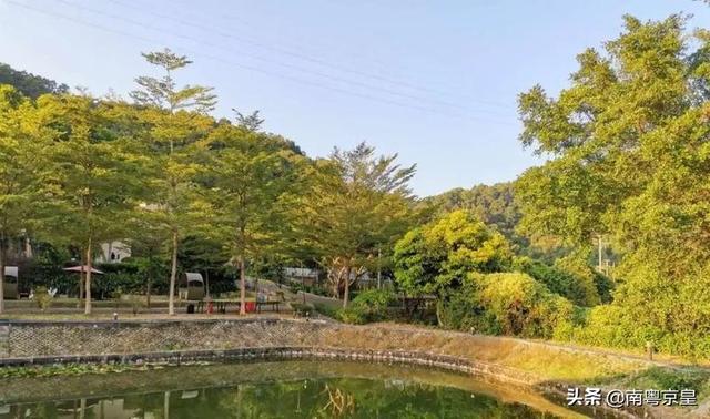 """约吗旅行:广州从化有处""""桃花源"""",藏着最好吃的春天,百花盛宴约不?"""