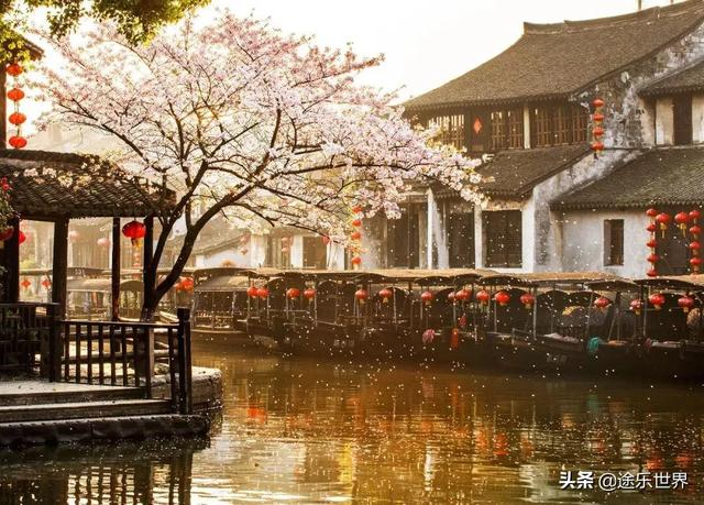 「旅行柚子君」西塘、普陀山、石门洞……四季不掉线的美景