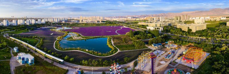 中国日报网■市企相依 勠力公荣——金昌与金川为未来发展携手共进