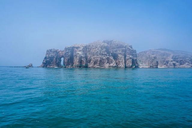 【约吗旅行】不只是村庄,最美海岸、珍稀动物、鸥鹭王国,在西霞口你都能找到