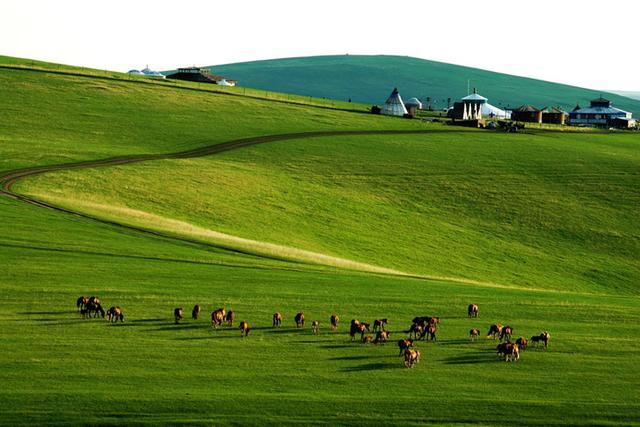【游河山】在河南,竟然藏着一个这么美丽的草原!