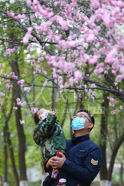 「人民图片」安徽庐江:赏梅享春意