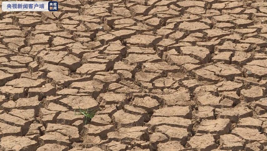 央视新闻客户端:严重旱情!云南147.79万人出现饮水困难