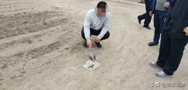 吉报调查双辽警方一周内破获5起非法狩猎案,收缴野生鸟类活体50余只