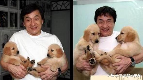 """成龙说:""""给我一个亿我都不卖,因为我太爱它们了"""""""