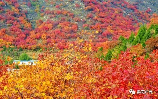 人少景美的五彩浅山你去过了么?